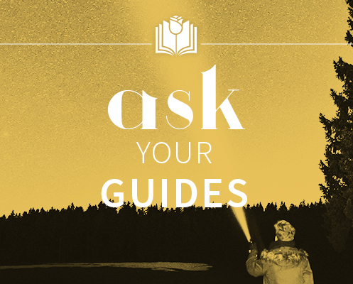 ask your guides sonia choquette pdf