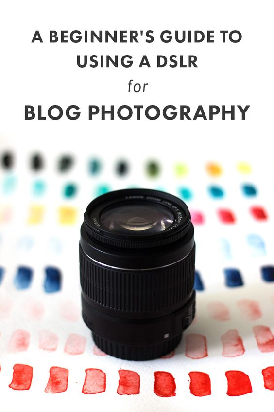 beginners guide to dslr photography